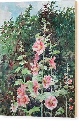 Oxenden Hollyhock Wood Print by Peter Sit