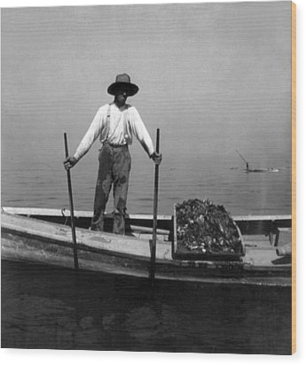 Oyster Fishing On The Chesapeake Bay - Maryland - C 1905 Wood Print by International  Images