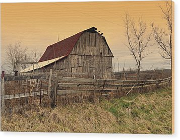 Wood Print featuring the photograph Ozark Barn 1 by Marty Koch