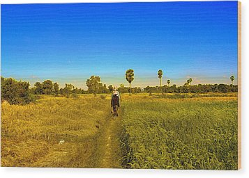 Paddy Field Wood Print by Arik S Mintorogo