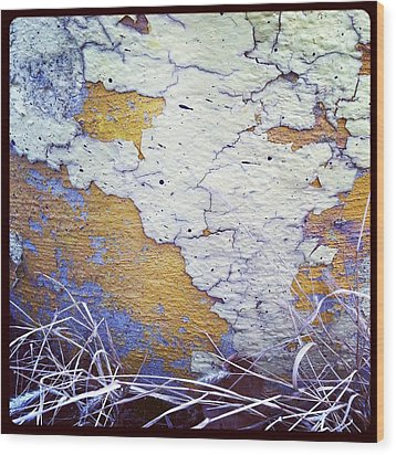 Painted Concrete Map Wood Print by Anna Villarreal Garbis