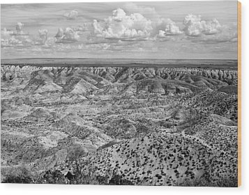 Painted Desert In B And W Wood Print by Melany Sarafis