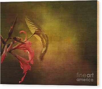Painterly Ballet Wood Print by Anne Rodkin