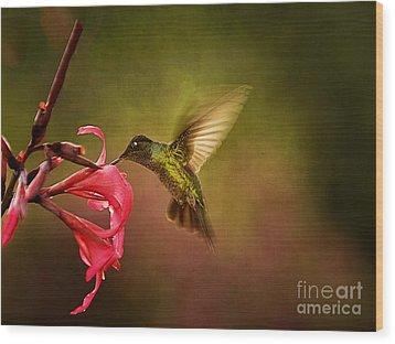 Painterly Hummingbird #1 Wood Print by Anne Rodkin