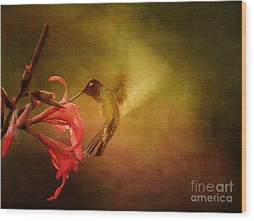 Painterly Hummingbird #2 Wood Print by Anne Rodkin