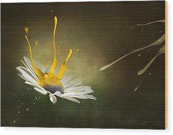 Painting Daisy Wood Print by Svetlana Sewell