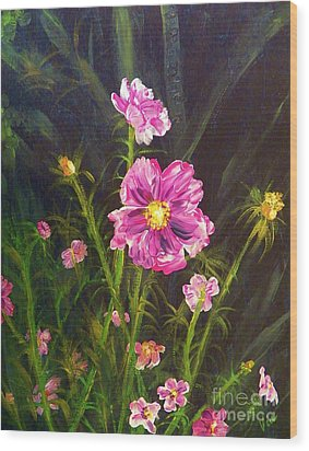 Painting Pink Streaked Cosmos Wood Print by Judy Via-Wolff