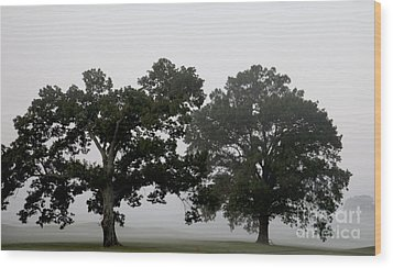 Pair Wood Print by Amanda Barcon