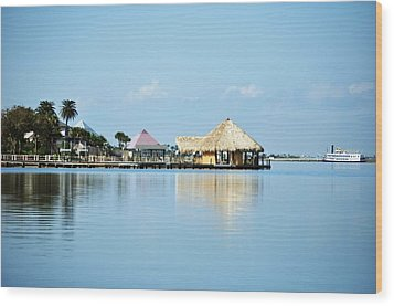 Wood Print featuring the photograph Palapa Over The Bayou by John Collins