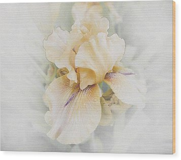 Pale Beauty Wood Print by Lynn Wohlers