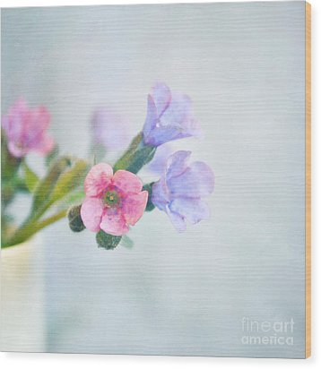 Pale Pink And Purple Pulmonaria Flowers Wood Print by Lyn Randle