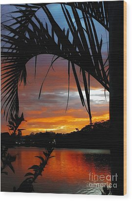 Palm Framed Sunset Wood Print by Kaye Menner