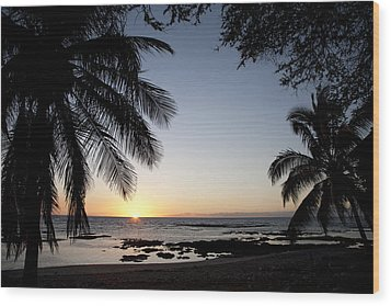 Palm Sunset Wood Print by Peter French