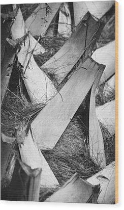 Palm Tree Macro Wood Print by Adam Romanowicz