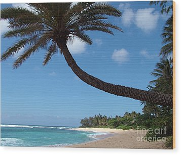 Wood Print featuring the photograph Palm Tree by Milena Boeva