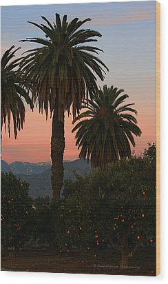Palm Trees And Orange Trees Wood Print by Dorothy Cunningham