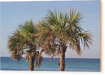 Palm Trees Wood Print by Sandy Keeton
