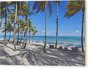 Palm Trees Shaded Beach Wood Print by George Oze