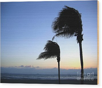 Palm Trees Swaying In The Wind Wood Print by Yali Shi
