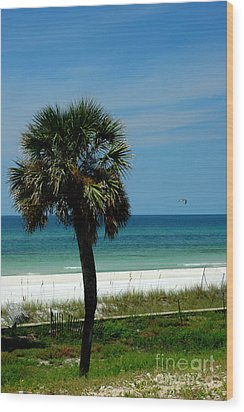 Palmetto And The Beach Wood Print by Susanne Van Hulst