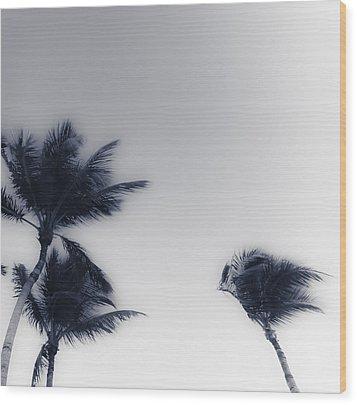 Palms 7 Wood Print
