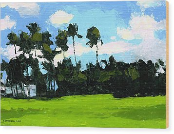 Palms At Kapiolani Park Wood Print by Douglas Simonson