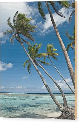 Palms In The Wind Wood Print by Jim Chamberlain