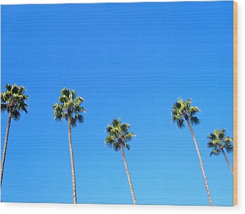 Palms Wood Print by JBDSGND OsoPorto