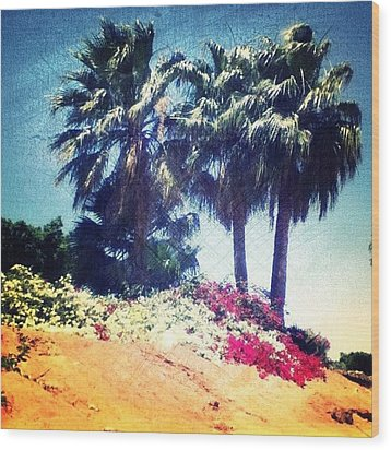 #palms #trees #beach #webstagram Wood Print by Andrea Bigiarini