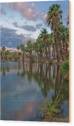 Palms Trees Over Papago Lake Wood Print by Dave Dilli