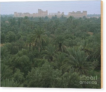 Palmyra Oasis Wood Print by Issam Hajjar