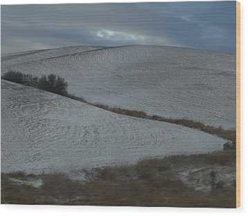 Palouse Winter 1 Wood Print by Mary McInnis