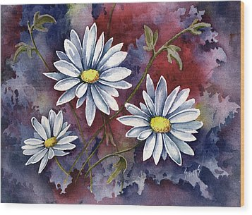 Pampa Daisies Wood Print by Sam Sidders