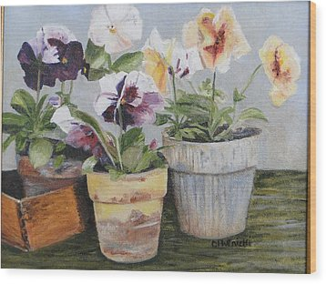 Wood Print featuring the painting Pansies by Cindy Plutnicki