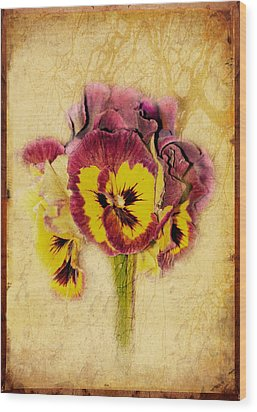 Pansy Wood Print by Margaret Hormann Bfa