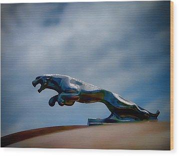 Panther Hoodie Wood Print by Douglas Pittman