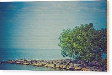 Paradise Cove Wood Print by Sara Frank