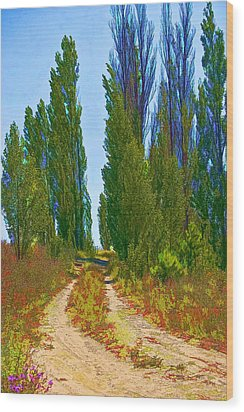 Paradise Road Wood Print by Randall Nyhof