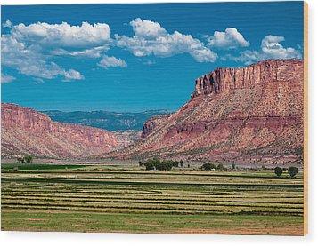 Paradox Valley One Wood Print by Josh Whalen