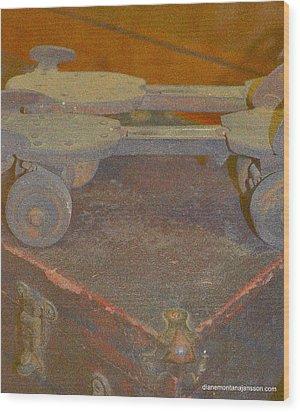 Parallel Skates Wood Print by Diane montana Jansson