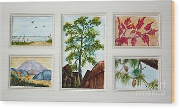 Parcels Of Nature Wood Print by Terri Mills