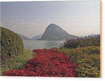 Parco Civico Lugano Wood Print by Joana Kruse
