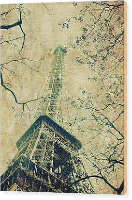 Paris Eiffel Wood Print by Antonietta Pics