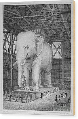 Paris: Elephant Monument Wood Print by Granger