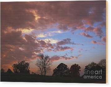 Park At Sunset Wood Print by Susan Isakson