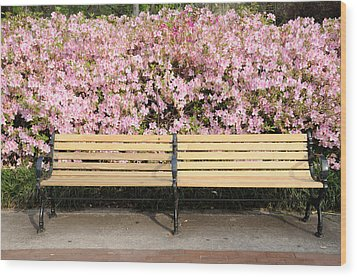 Wood Print featuring the photograph Park Bench And Azaleas by Bradford Martin