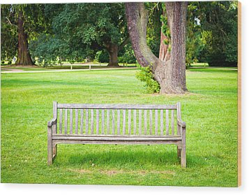 Park Bench Wood Print by Tom Gowanlock