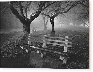Park Benches Wood Print by Gary Heller