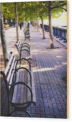 Park Benches In Hoboken Wood Print by George Oze