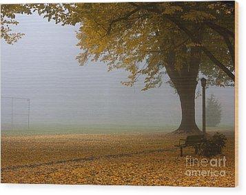 Park In Autumn Wood Print by David Buffington